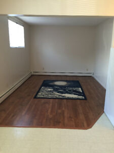 Massey Place/ Large 1 Bedroom suite/ Non-Smoking
