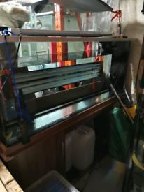 Clear seal fish tank