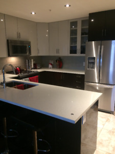 Luxurious 1 Bedroom Apartment For July 1st - Downtown Halifax
