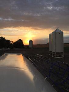 JTL Grain Bins and Floors for Sale Strathcona County Edmonton Area image 6
