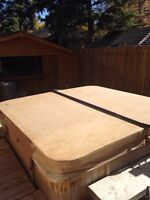 Hot tub cover and arm lift