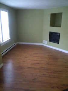 Downtown Area - Beautiful Top level 2 Story Apartment