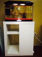 10 gallon aquarium set