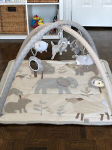 BaBy Play Mat- only 50 Dollars
