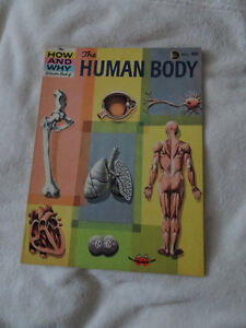 vintage 1961 HOW AND WHY WONDER BOOK OF THE HUMAN BODY