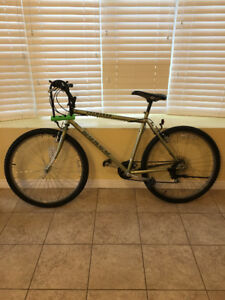 Bike and Lock for sale!