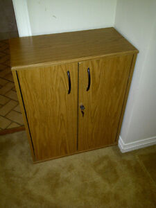Small Cabinet with Door Lock Kitchener / Waterloo Kitchener Area image 1