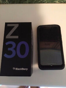 Blackberry Z30 (with Otterbox case, charger cord, and cube)