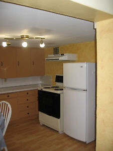 Downtown 1 Bedroon
