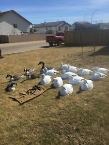 Canada Goose vest online discounts - Decoys | Kijiji: Free Classifieds in Fort McMurray. Find a job ...