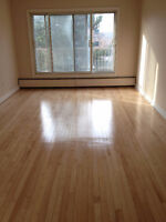 Large and bright 1 bedroom apartment DORVAL