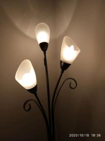 Standing light