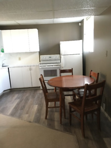 One bedroom + Den, Bright Basement Suite across from Candy Cane