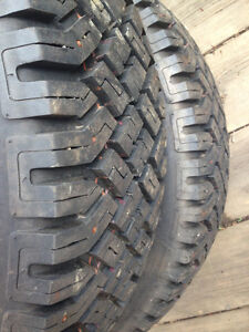 2 new studded tires
