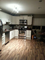 Room for rent in downtown condo Fernie