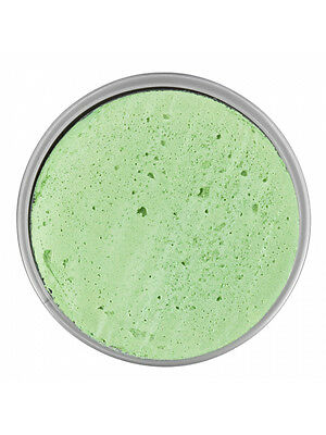 18ml Snazaroo Sparkle Pale Green Face & Body Paint Fancy Dress Halloween - Pale Face Halloween
