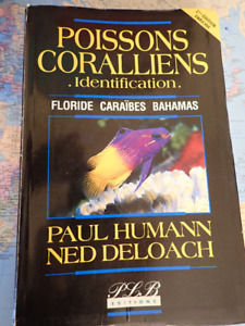 Guide d'identification poissons coralliens caraïbes