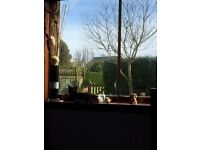 3 bed semi detached bungalow, looking for swap to Kelso, if not the other places