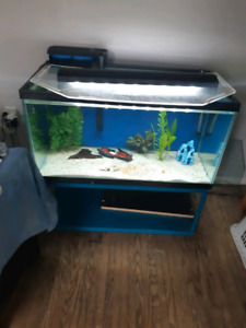 Tank's for sale