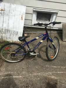 Blue Mountain Bike (Read Description)