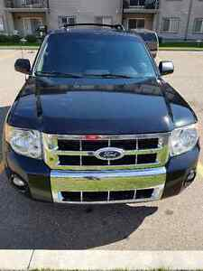 """Price Reducced""  2010 Ford Escape Limited SUV, Crossover 4x4"
