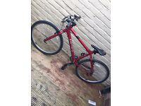 Red carrera bike