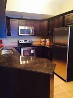 SOUTH TERWILLEGAR 2BED/2BATH   INCLUDES UTILITIES BRAND NEW$1400