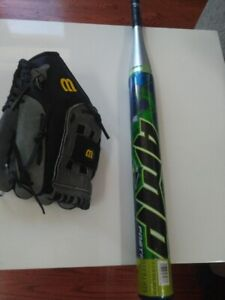 Baseball Bat and Leather mitt