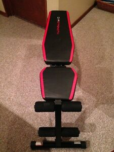 4 Position Workout Bench - Brand New