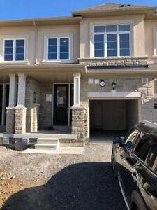Brand New Luxurious Townhome for Rent (Move in End of the Month)