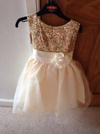 Brand new flower girl dress