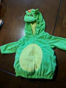 12 month Dragon costume