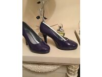 Brand new pair of Viva la Diva deep purple shoes size 6