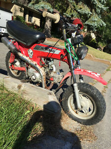 honda ct70 mini trail 125cc