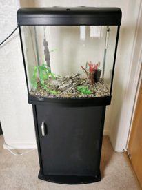 Fish Tank And Stand Full Set Up Plus Accessories