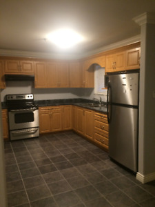 1 bedroom ground floor basement suite South Vancouver