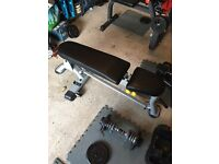 Commercial weights bench, Ez curl bench, 32.5kg dumbells and ez bar with 50kg cast iron weigh