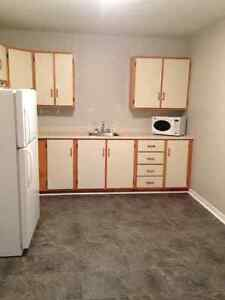 Above ground 1 bedroomm in Cowan Heights for rent. $700 POU St. John's Newfoundland image 4