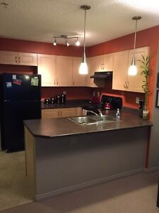 Pristine one bed/one bath condo in Rutherford