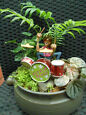 NANCY'S MINI GARDENS & GIFTS (THEMED MINI INDOOR/PATIO GARDENS) Broadbeach Waters Gold Coast City image 1