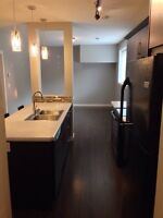 Newer, Modern Lower Level Suite, Move in Ready!