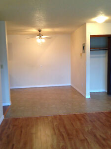BEAUTIFUL 1 BEDROOM AVAILABLE  IMMEDIATELY