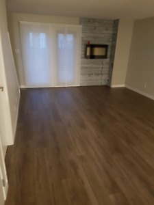 Fully Renovated Modern 3 Bedroom Townhouse in South Riverheights