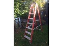 Step ladders. High quality profession ladders.