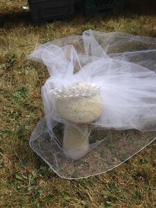 Veil  & Head Piece Cornwall Ontario image 3