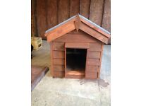 New dog kennel