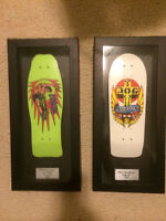 Teck Deck Collectible Skateboard Display Cases