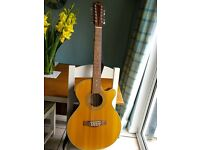 Fender 12 string electro-acoustic guitar with Fishman pickup