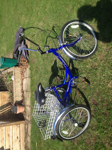 Tricycle pour adultes - Adult tricycle