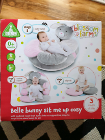 Belle bunny sit me up cosy